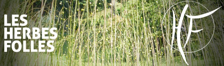 herbes folles.jpg